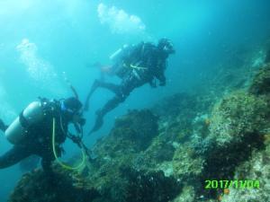 Divers 1