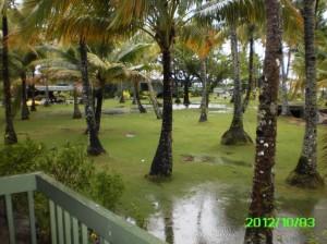 35 Blue Lagoon Lakes