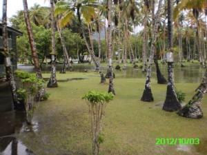 36 Tropical Lakes