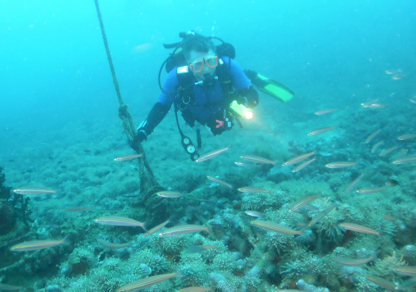 Andrew with schooling fish at ascent